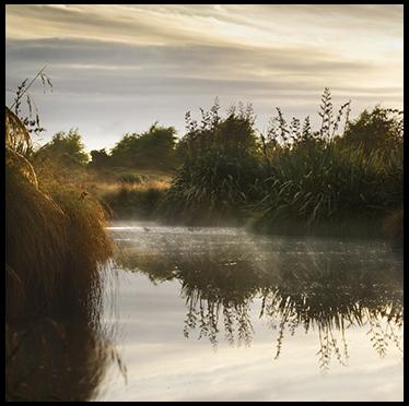 Boatshed Bay – Marlborough Sounds